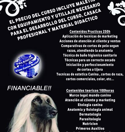 Centro Formación Profesional Valencia - Alianz Formación