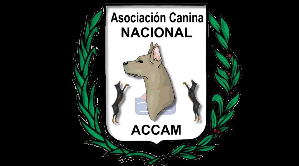 ACCAM_transp