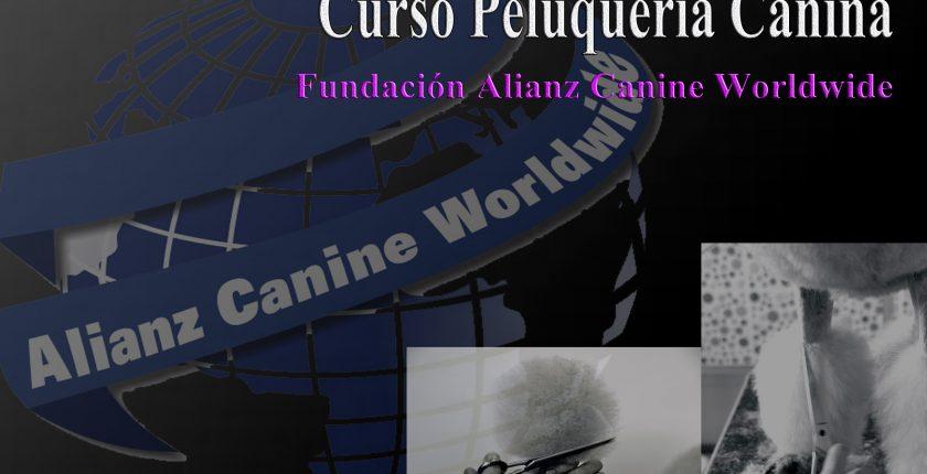 Curso Peluquería y Estética Canina - Alianz Formación
