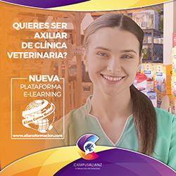 Auxiliar en Clínica Veterinaria